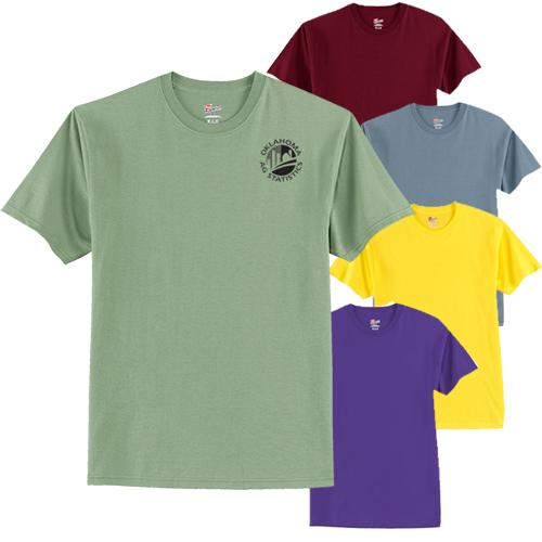 16615C - Hanes® - Tagless® 100% Cotton T-Shirt (Color)