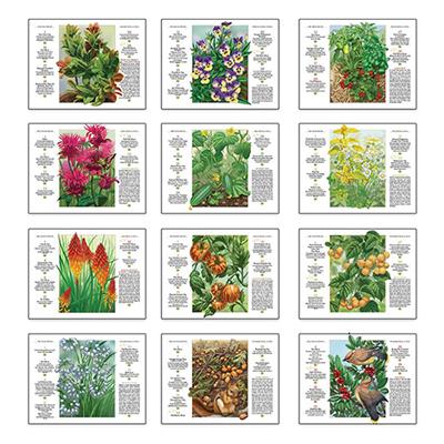 17729 - Gardening Spiral Wall Appt Calendar