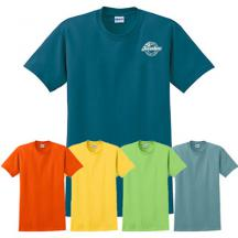 promotional gildan® - ultra cotton® t-shirt (color)