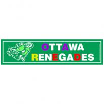 19167 - Car Sign Bumper Magnet
