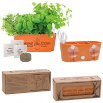 28569 - Wall Sprouts Indoor Garden Blossom Kit