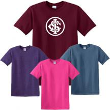 promotional gildan® - heavy cotton™ 100% cotton t-shirt (color)