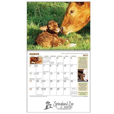 Baby Farm Animals Wall Calendar