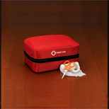 Custom StaySafe Travel First Aid Kit