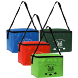 18845 - Penpal 6-Pack Cooler