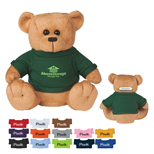 Custom Logo Big Bucks Plush Bear Bank - Promo Big Bucks Plush Bear Bank