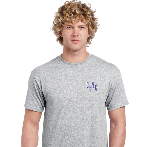gildan® classic fit adult t-shirt  (heather)
