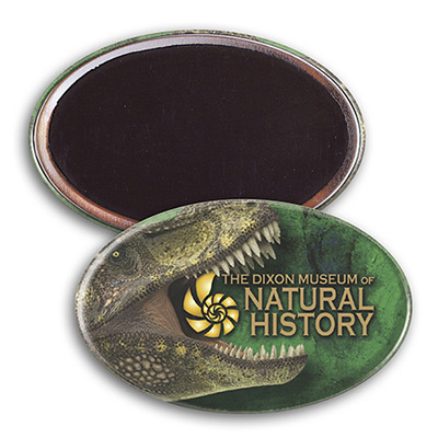 Oval Button Magnet