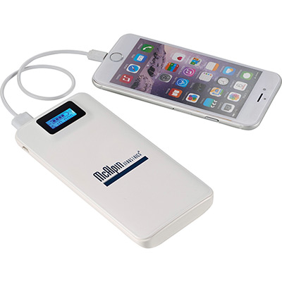 Cheetah Power Bank with Quick Charging Technology