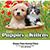 Puppies Kittens Wall Calendar Stapled 26285 Front