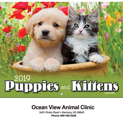 Puppies & Kittens Wall Calendar - Stapled
