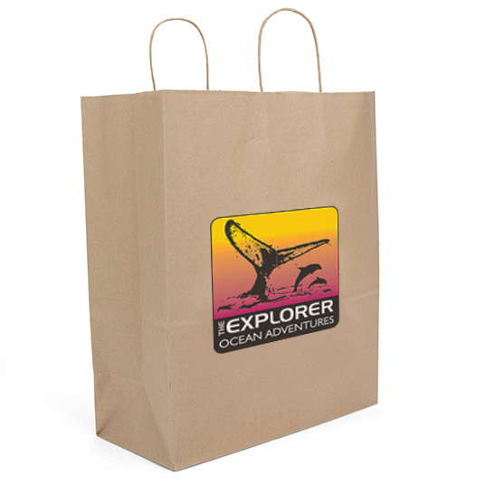 Eco Guard Paper Bag (Color Vista)