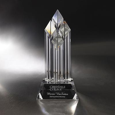 magnum opus award