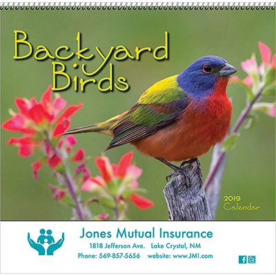 backyard birds wall calendar - spiral 2019