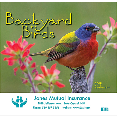 backyard birds wall calendar - stapled