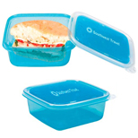 Custom Logo Lunch Boxes, Freezable Gel Lid Storage
